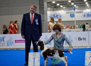 World Dog Show 2016